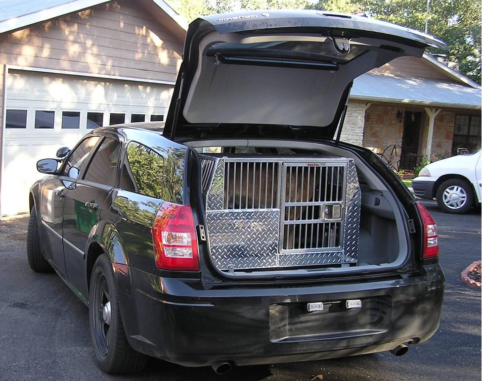 Cages Chiens Dans Vehicule