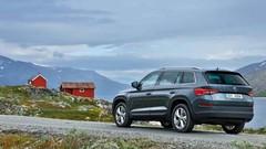 Skoda : Un SUV anti-Juke et des « RS »