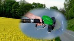Le biodiesel trop grand consommateur d'huile de palme