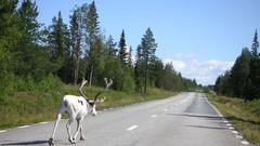 Les routes les plus et les moins sûres d'Europe