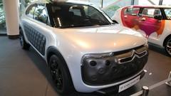Citroën C4 Cactus : vidéo de ceux auxquels vous avez échappé !
