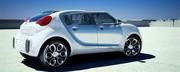 Citroën C-Cactus : concept à contre-courant