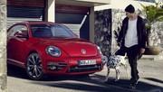 Volkswagen Coccinelle : un restylage pour la forme