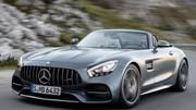 Mercedes-AMG GT Roadster : Sur l'échafaud