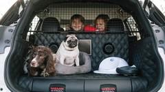 Nissan X-Trail 4Dogs : le meilleur ami des chiens