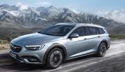 Opel Insignia Country Tourer : éclair champêtre