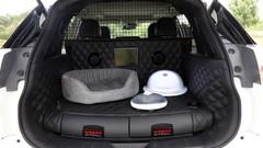 Prise en mains vidéo - Nissan X-Trail 4dogs : un SUV qui a du chien