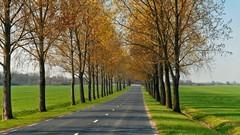 Mortalité routière : enfin une forte baisse