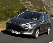 Peugeot 308 SW : Convivialité féline