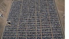 Dieselgate : Le cimetière américain de Volkswagen