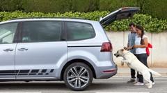 7 conseils pour partir en vacances sereinement en voiture avec son chien