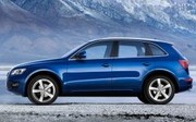 Audi Q5 : Tueur de X3