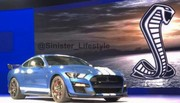 Ford Mustang Shelby GT500 : en fuite sur la Toile ?