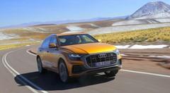 Essai Audi Q8 : Variation de l'espèce