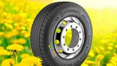 Continental croit toujours aux pneus au pissenlit