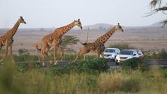 L'Automobile Magazine et M6 Turbo en Tanzanie : les coulisses du tournage
