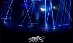 Ford Puma, il est de retour !