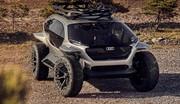 Audi dévoile l'AI:Trail Quattro Concept