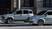 Fiat 500 & Panda Hybrid : l'électrification à bas coût