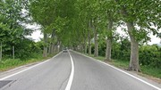 Mortalité routière : très mauvais début d'année 2020