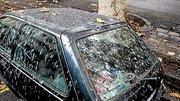 Les oiseaux pourront se soulager sur les Ford