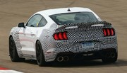 Ford Performance poursuit le développement de sa Mustang Mach-1