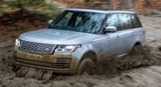 Essai Range Rover P400e : j'ai souillé Sa Majesté hybride !