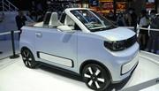 Freze Froggy EV : Le cabriolet électrique le moins cher d'Europe !