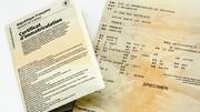 Carte grise et permis de conduire : Le site officiel ANTS se renouvelle