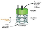 Du diesel de synthèse à partir de sucre