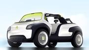 Citroën Lacoste : véhicule compact et ludique