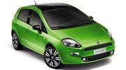 Fiat Punto 2012 : évolution pour le Salon de Francfort