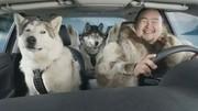 Super Bowl 2012 : la Suzuki Kizashi Sport, voiture préférée des Inuits
