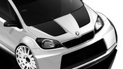 Skoda Citigo Rally Un Concept Triple Xl Au Gti Worthersee 2012