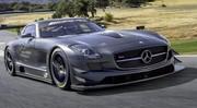 """Mercedes SLS AMG GT3 """"45th Anniversary"""": pour la piste"""