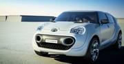Citroën: la C-Cactus pour 2014