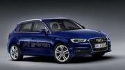 Une Audi au gaz naturel !
