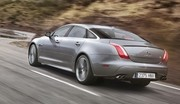 Jaguar XJR : bon sang ne saurait mentir