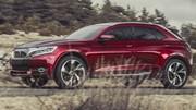 Citroën DS Wild Rubis : sauvage et chinoise
