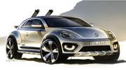 Volkswagen Beetle Dune : Coccinelle du désert