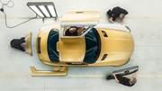 Mercedes AMG signe une année 2013 record