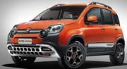 Fiat Panda 4x4 cross : que d'la gueule !