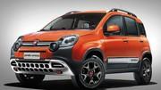 Fiat Panda Cross 2014 : La tête de l'emploi