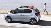 Citroën C1 : Petite souris !