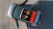 Citroën C1 : Guerre de puces
