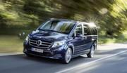 Essai Mercedes Classe V (2014) : toute la famille en classe Affaires