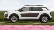 Essai Citroën C4 Cactus : sur un air de jamais-vu
