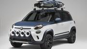 Concept-car : Fiat 500L Vans Concept