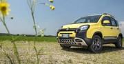 Fiat asséché mais optimiste pour 2014