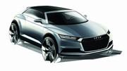 Audi : feu vert pour le Q8